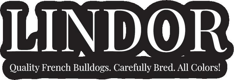 Lindor French Bulldogs